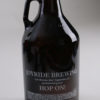 Joyride 64 oz Growler - Back