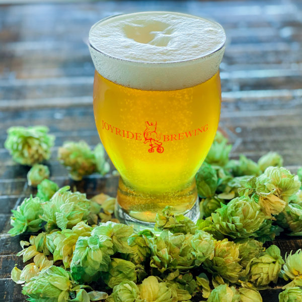 Picture of an IPA in a glass surrounded by hops